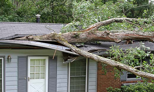 Storm damage caused by falling tree